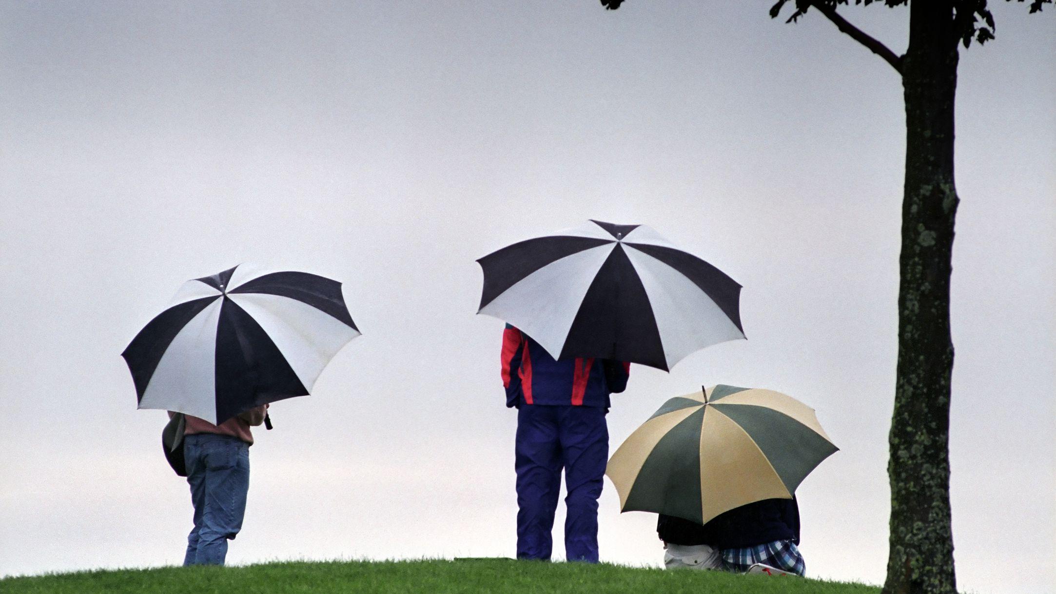 6eed9a6e0 The 7 Best Golf Umbrellas of 2019
