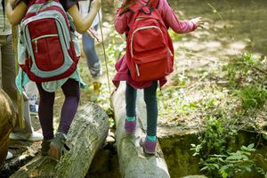 back view of two children wearing backpacks walking across logs in the forest