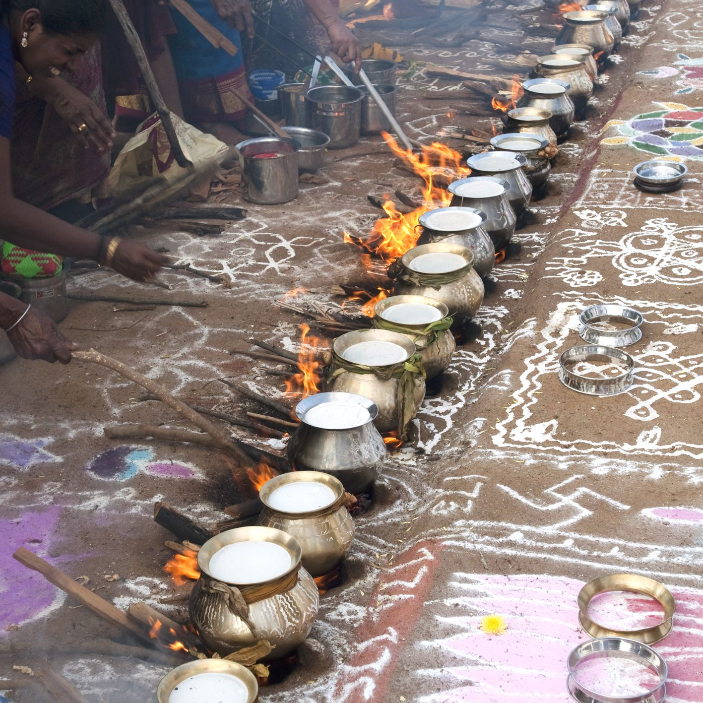 Guide to Celebrating 2019 Pongal Festival