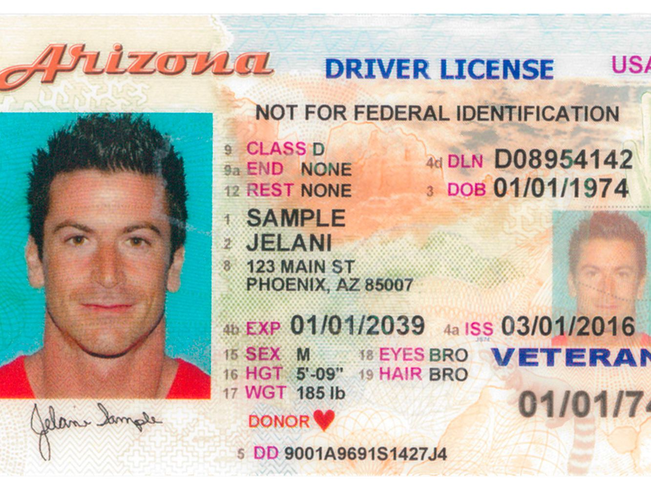 difference between drivers permit and license in texas