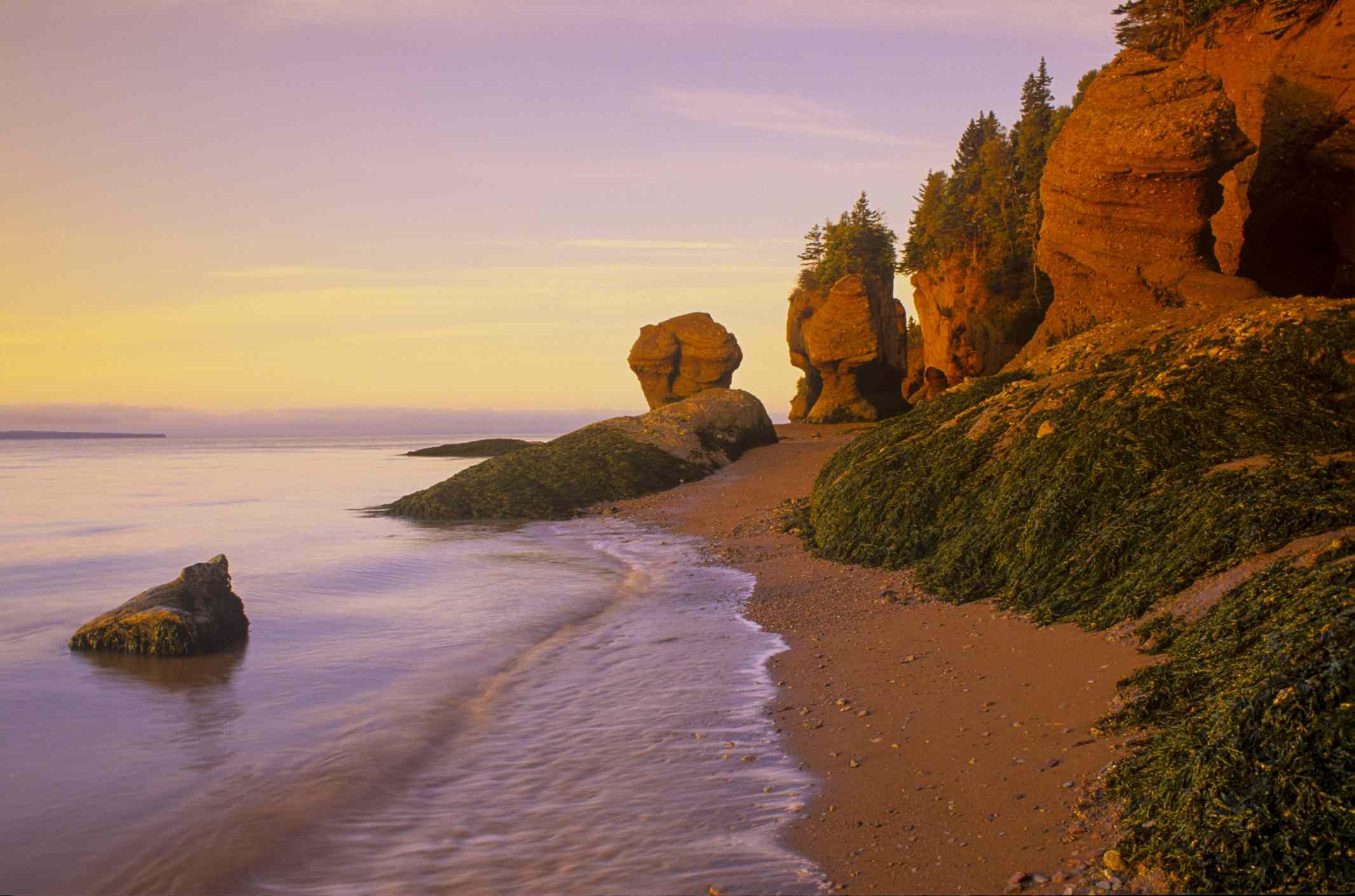 Parque Provincial Hopewell Rocks al amanecer