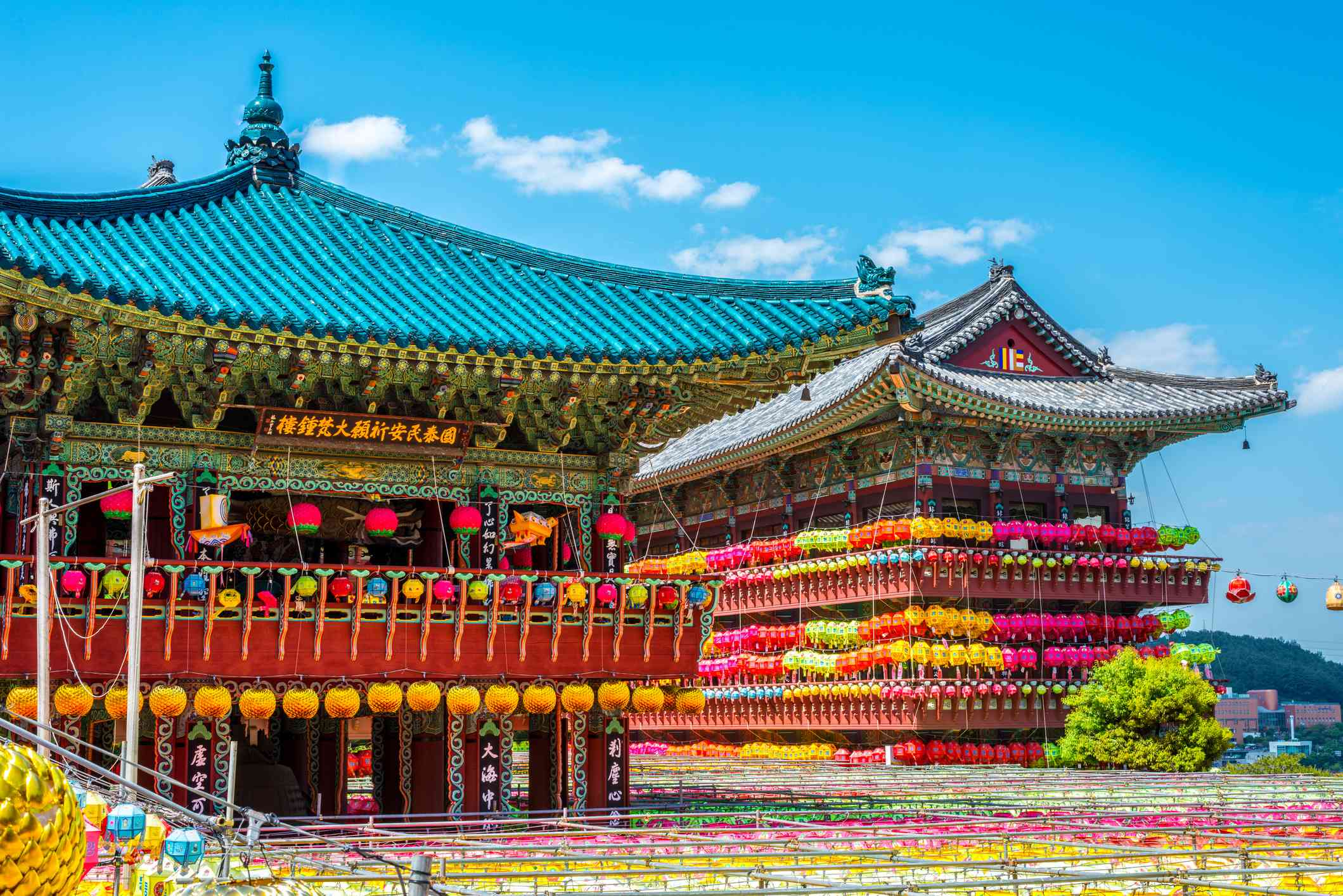 Two buildings in the Busan Samgwangsa Temple complex decorated with hundreds of colorful lanterns