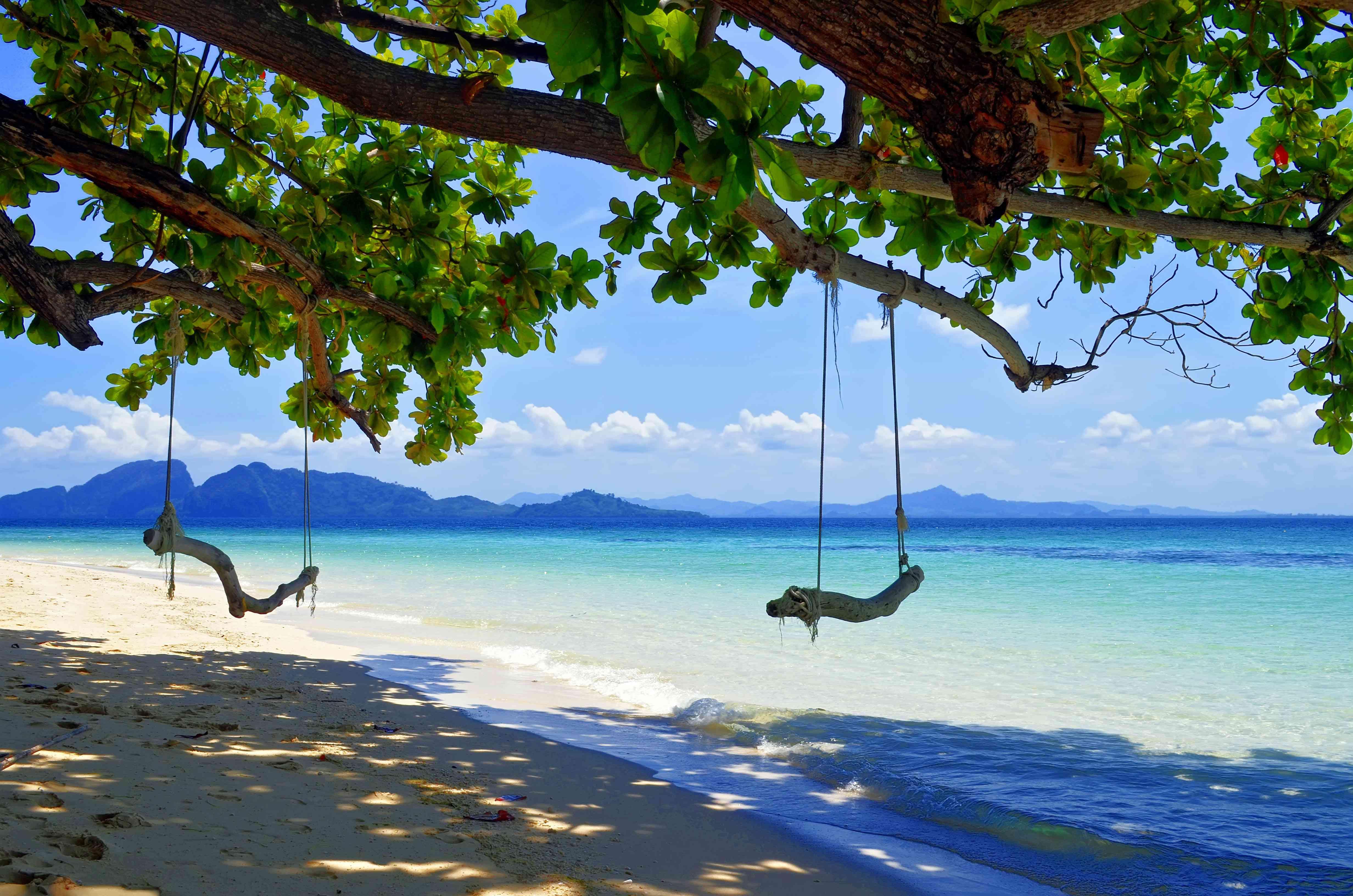 Swings hanging from tree over beach at Koh Kradan
