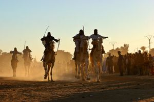 Careers of camels in the Festival of Tourism, Sahariano, Tamanrrasset, National Park of the Hoggar, Sahara Desert