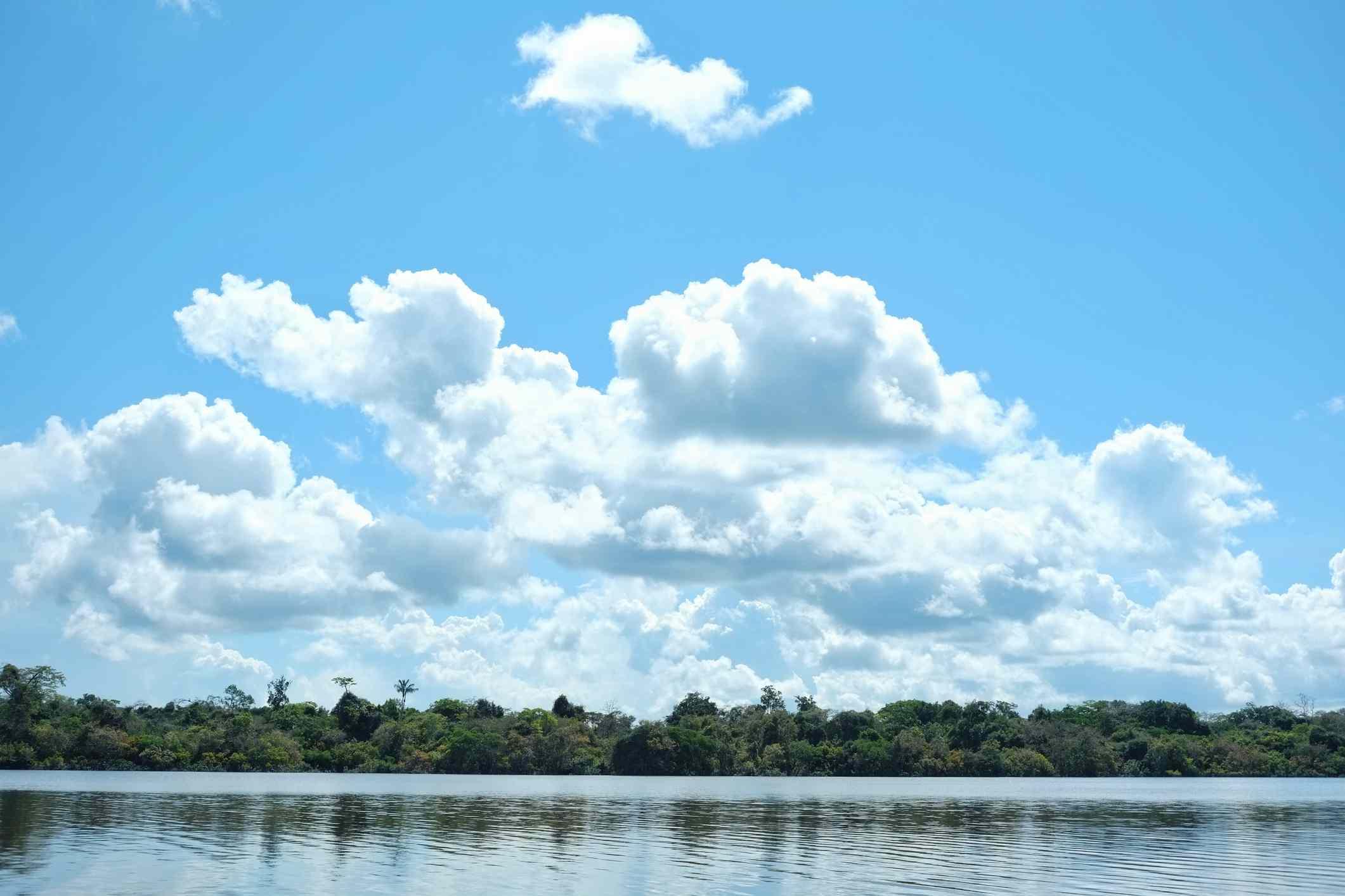 Javari valley, Amazon, Brazil