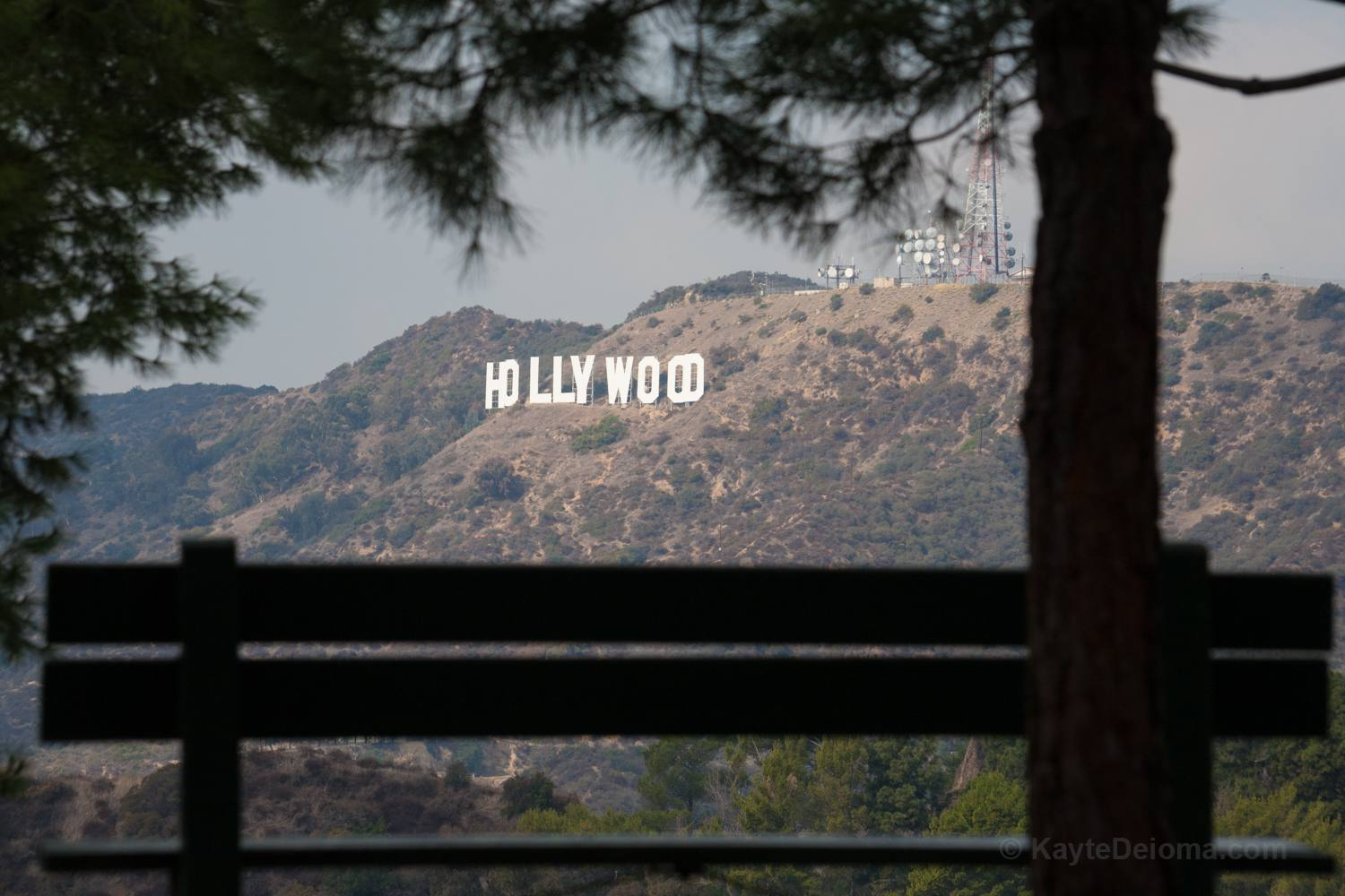 View of the Hollywood Sign from Mt. Hollywood Trail