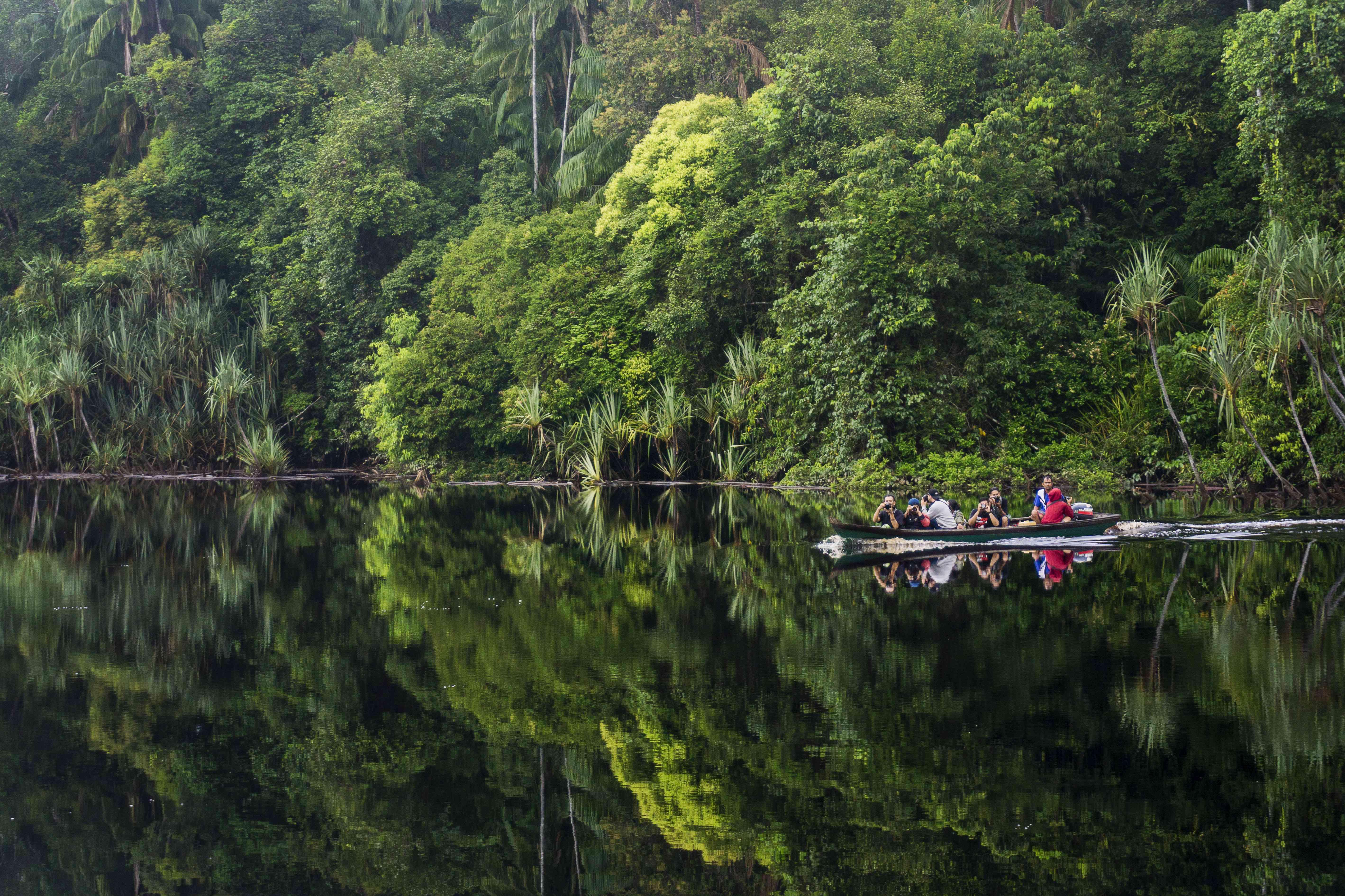 Tourists in a boat exploring Berbak National Park in Sumatra