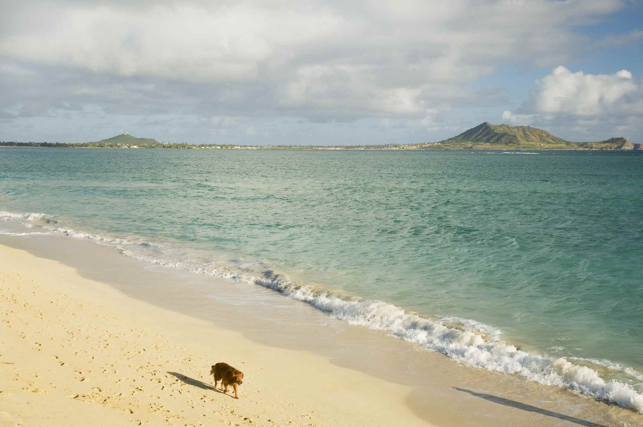 Kailua Beach in Hawaii.