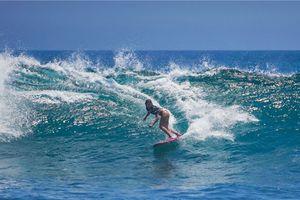 Los Cabos Open of Surf