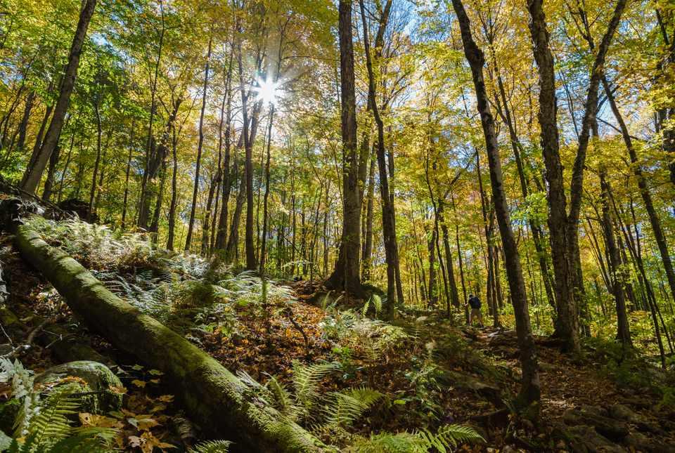 Vermont Top Hikes