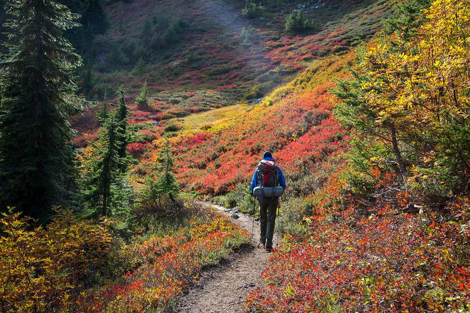 Hiker enjoying the fall colors