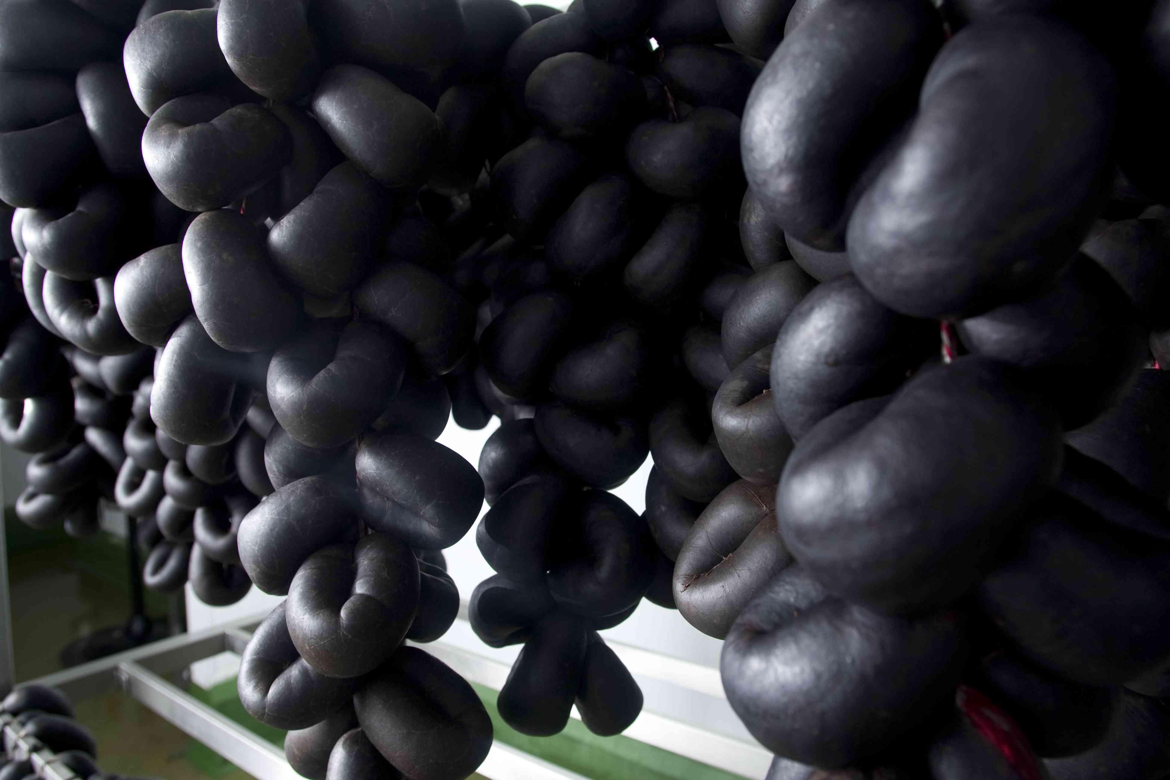 Freshly-made traditional Bury black puddings drying on a rack