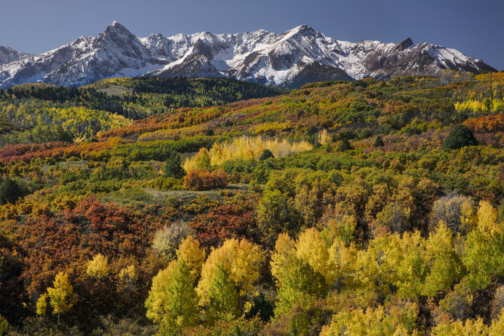 The Best Places to See Fall Foliage in Colorado