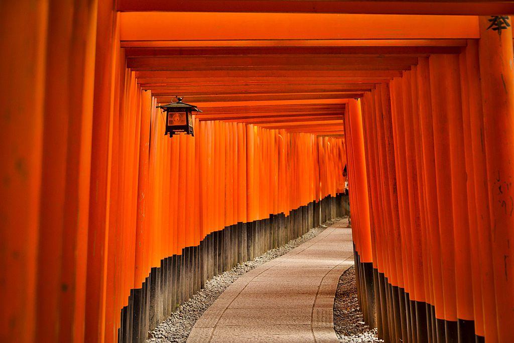 series of orange gates on a curving path at fushimi inari shrine