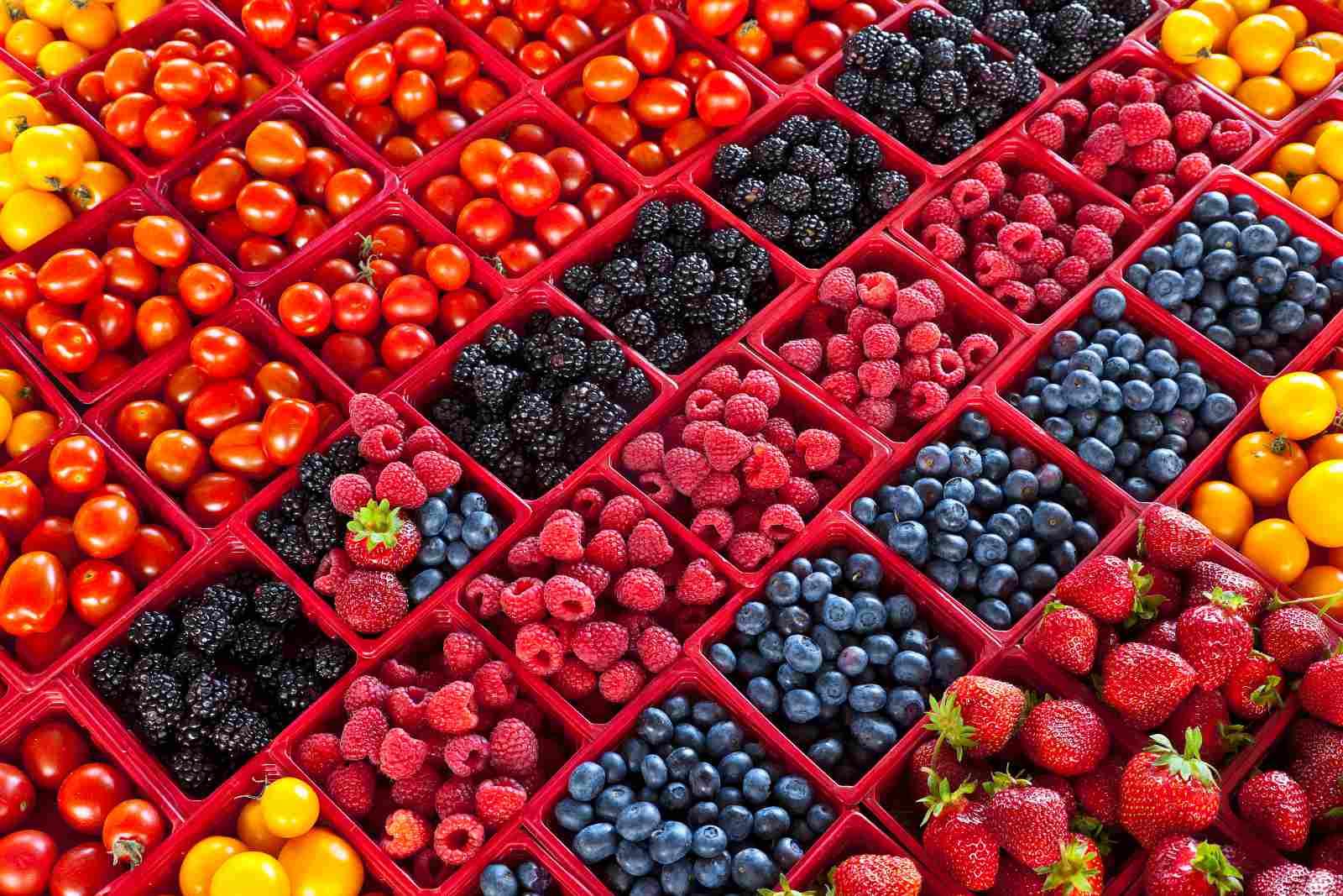Consejos y trucos de Slow Food Montreal para comer local como un locavore