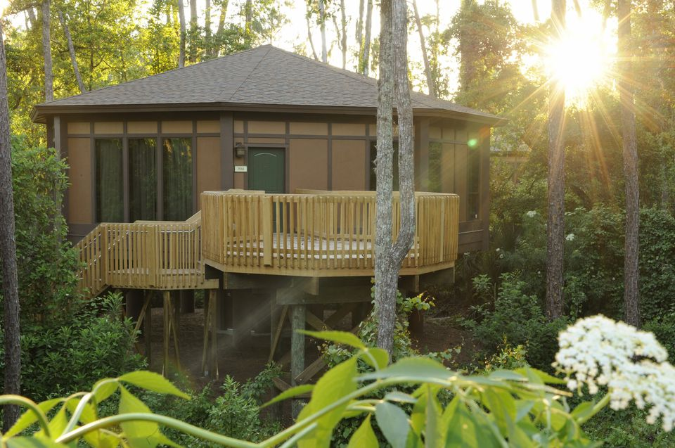 Disney's Treehouse Villas