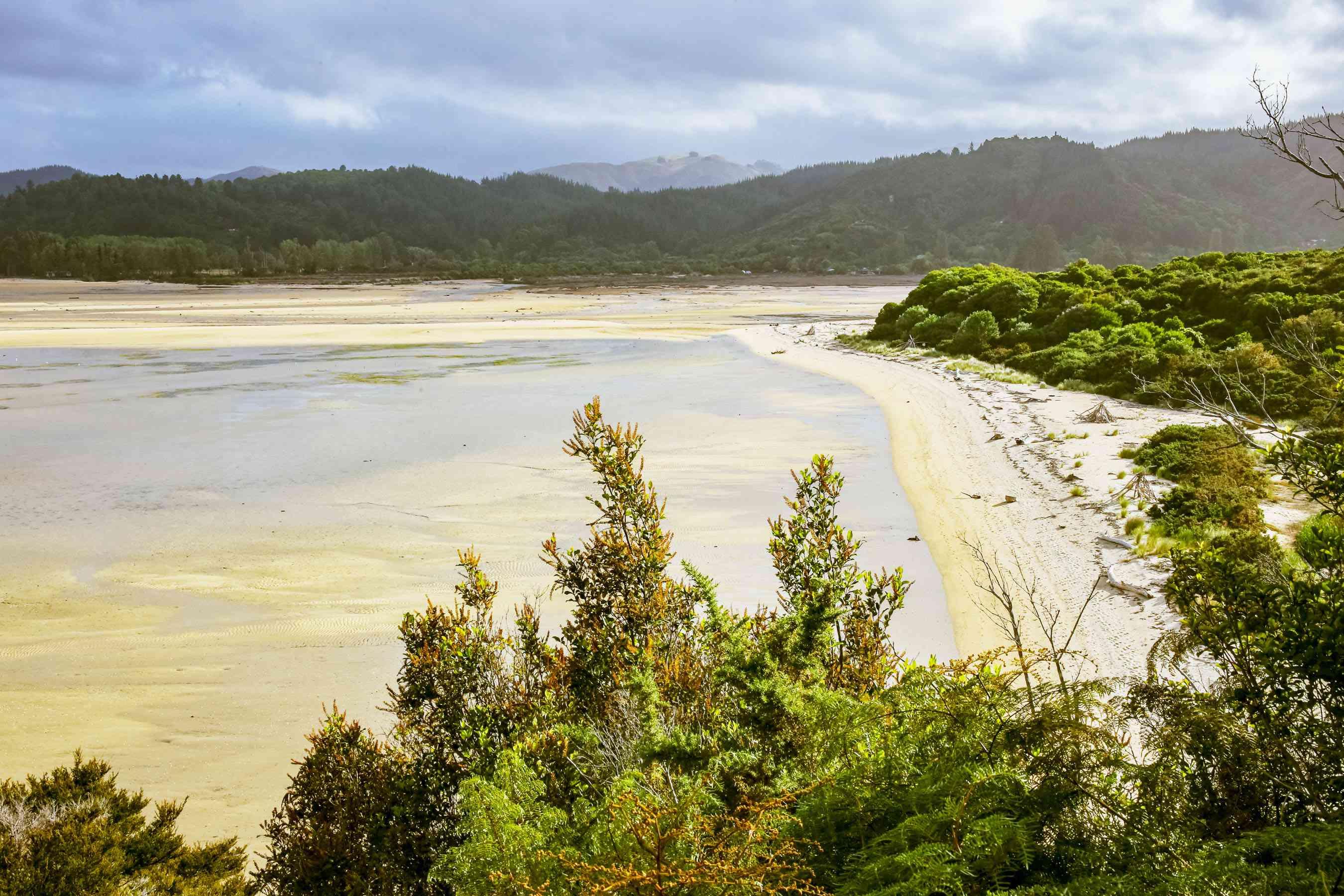 View of a sandy beach in Abel Tasman