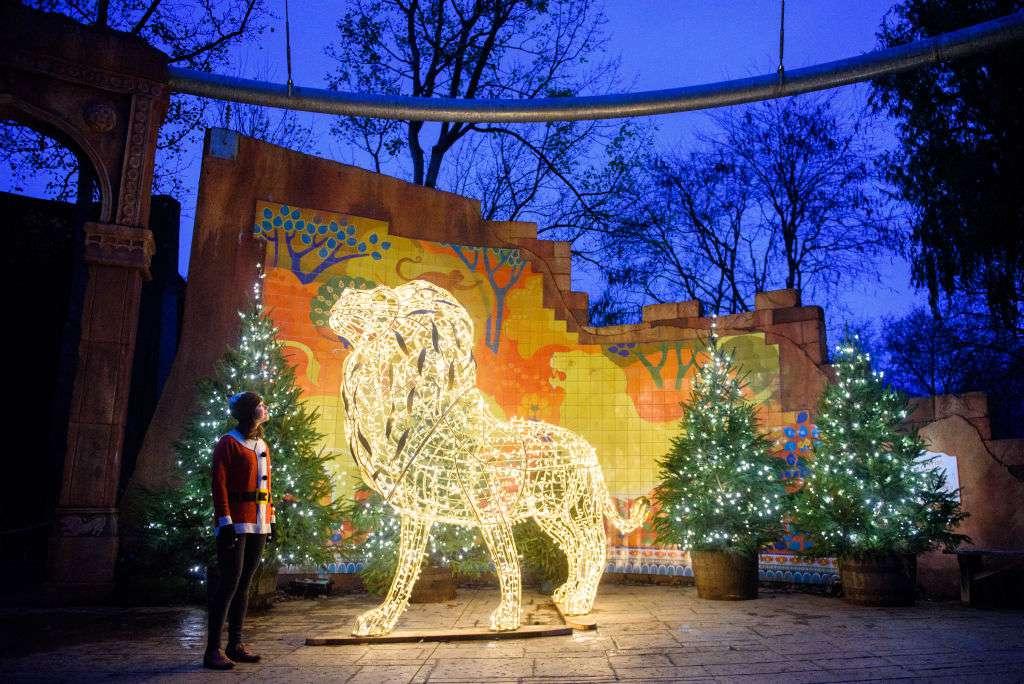 Holiday lights at London Zoo