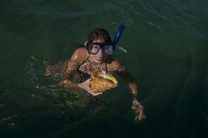 snorkeling woman with conch