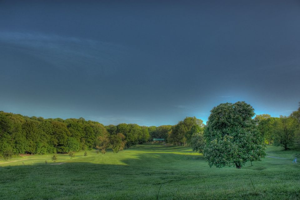 Forest Park Golf Course in New York.