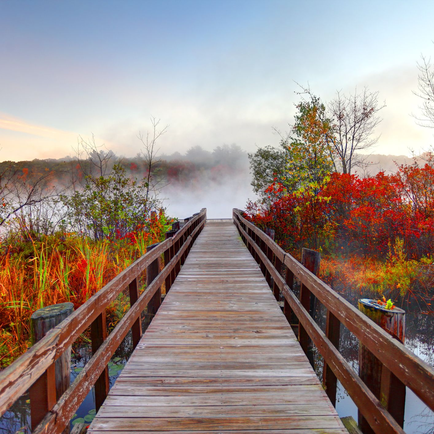 The Best Places to See Fall Colors Near Boston
