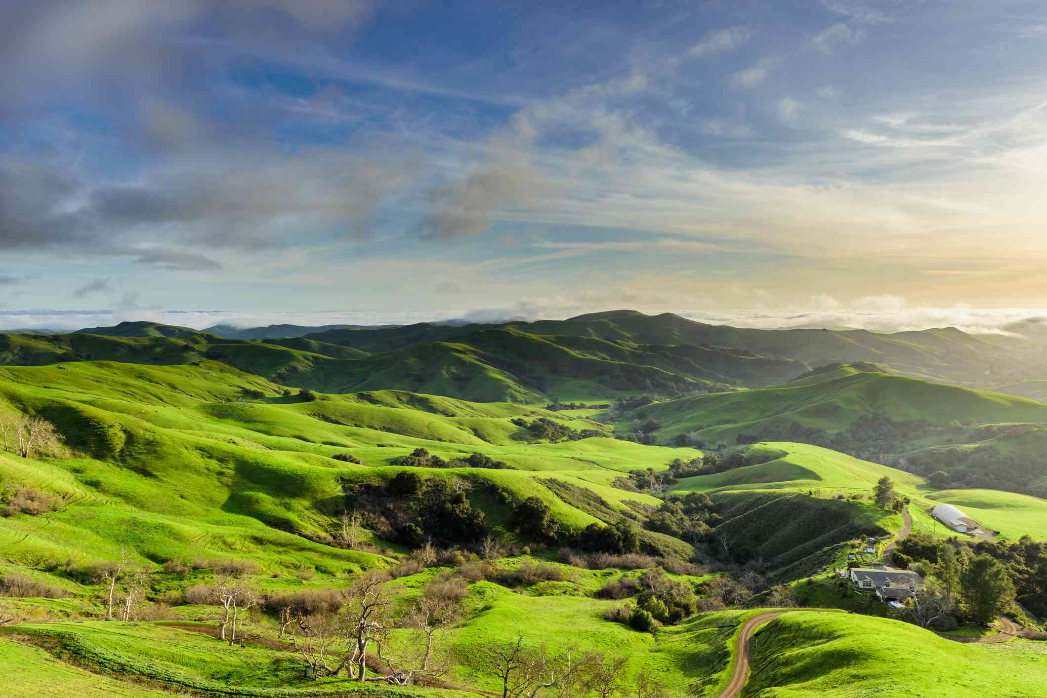 Rolling hills of Green Valley, Paso Robles