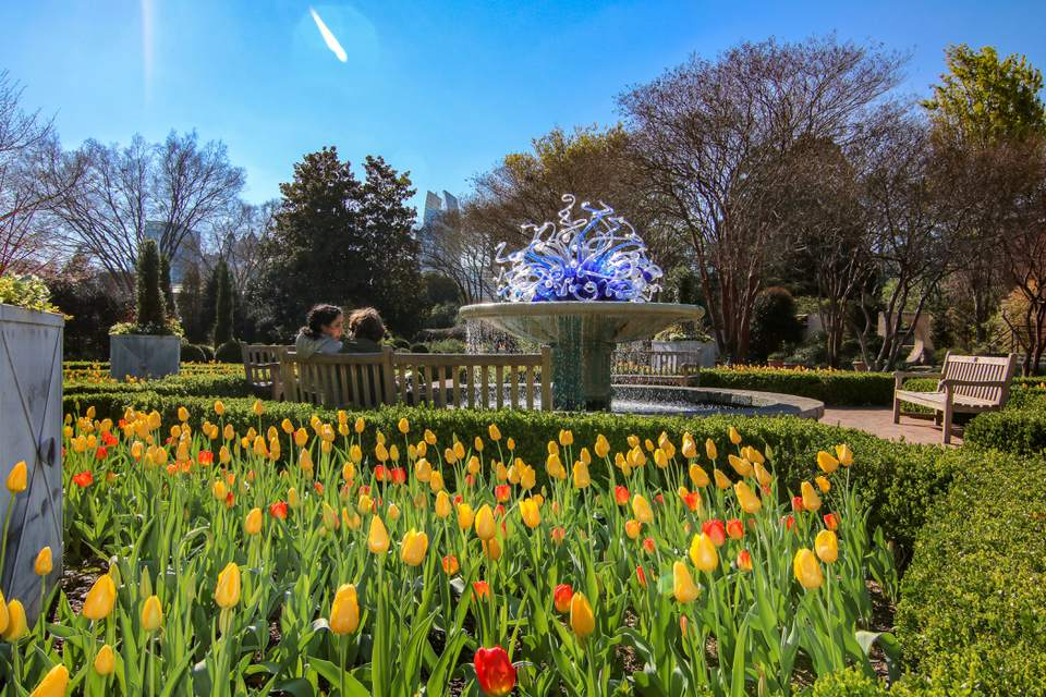 Glass Chihuly Sculpture with yellow and orange tulips in front of it at the Atlanta Botanical Garden