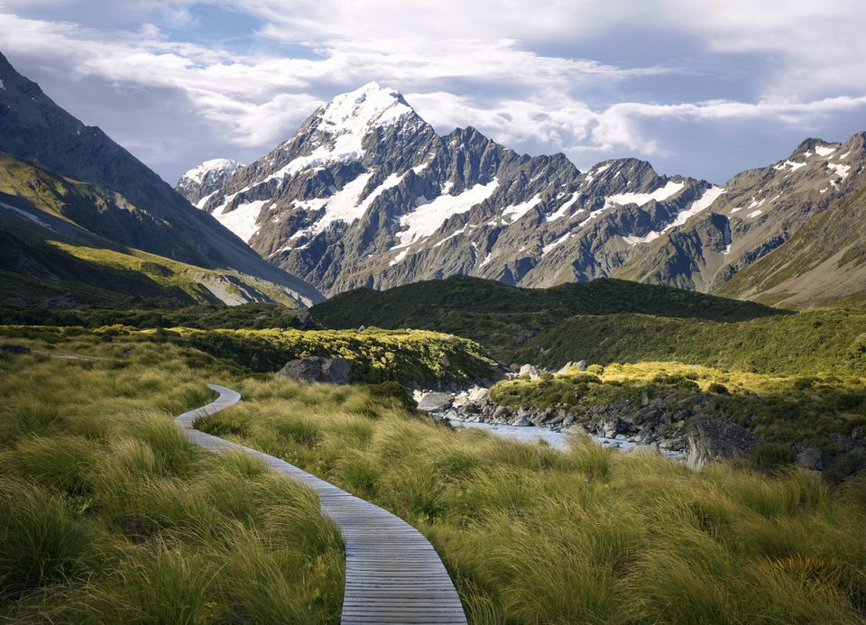 snow capped mountain, Mt. Cook, with grassland in front and a boardwalk snaking into the distance