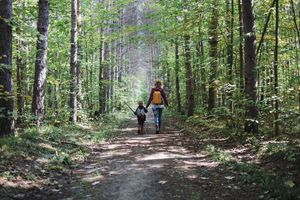 Rear view of mother and son with backpack hiking in forest