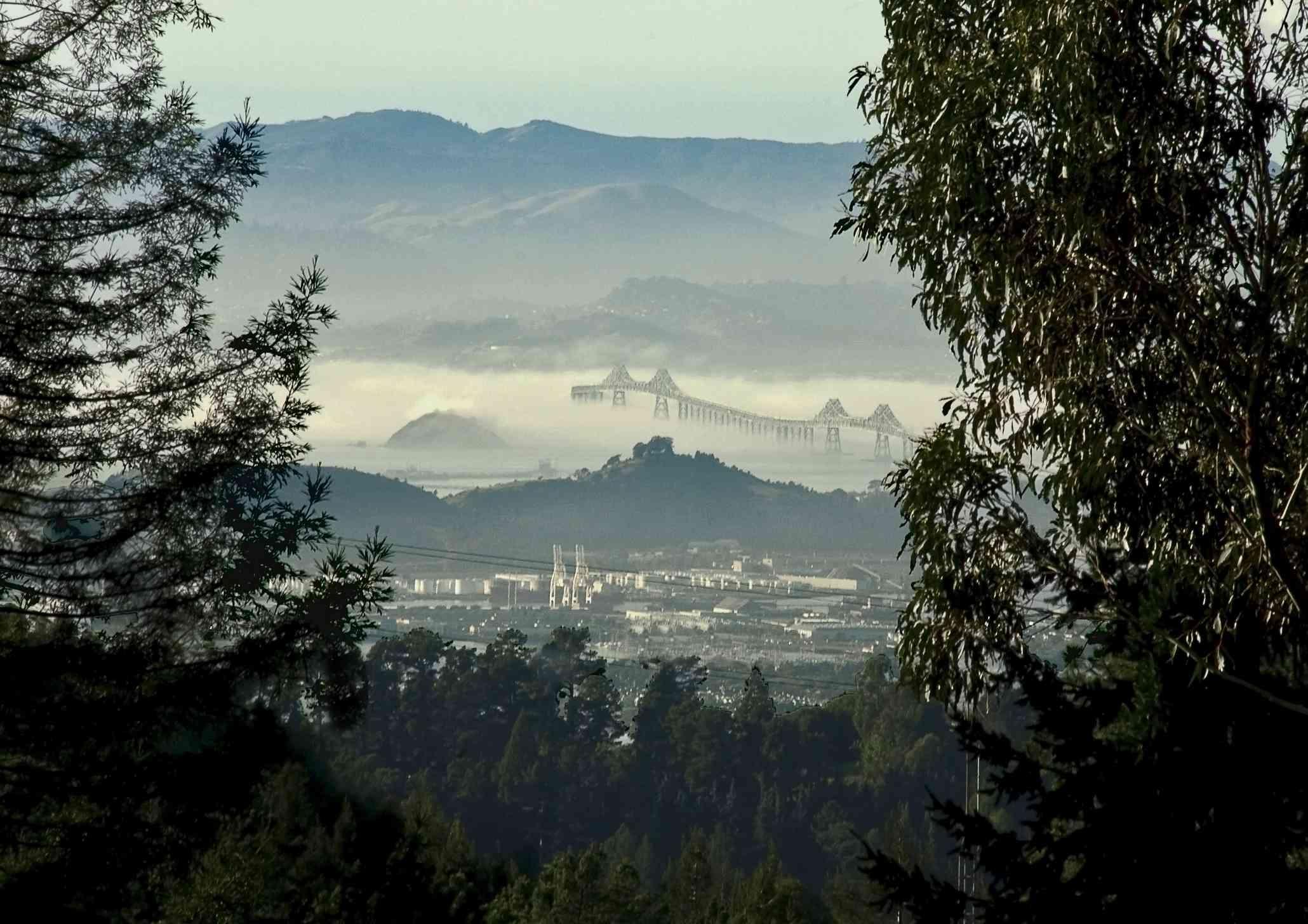 View of Berkeley and the golden gate bridge from Tilden Park's Vollmer Peak