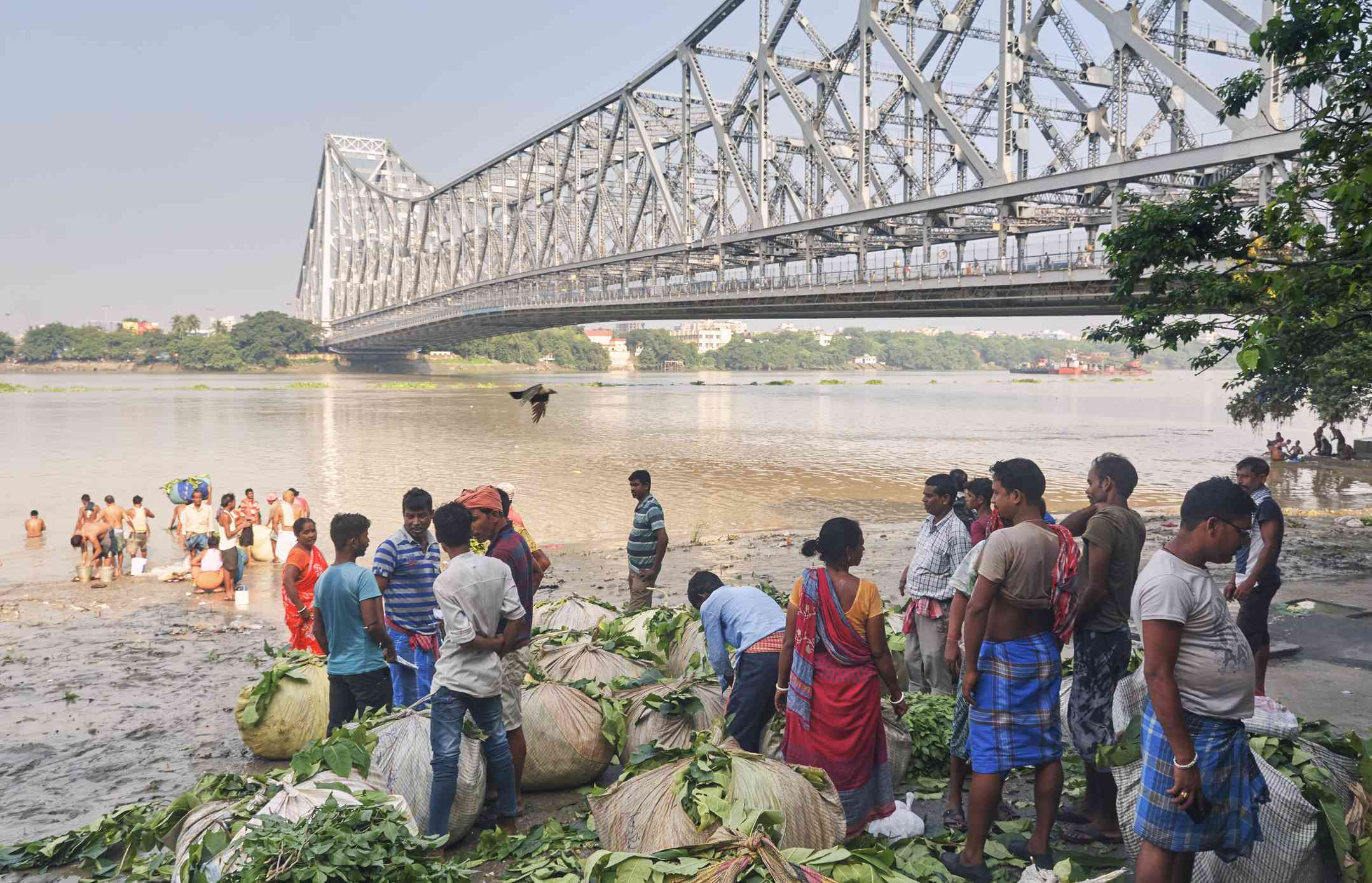 Daily activities of people and flower traders at Mallick ghat