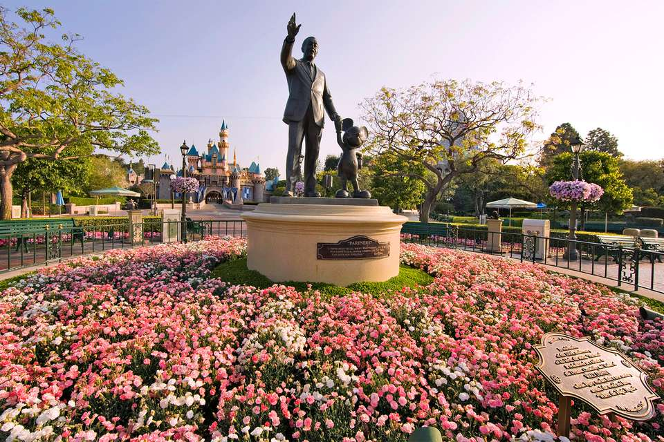 Spring Flowers at Disneyland