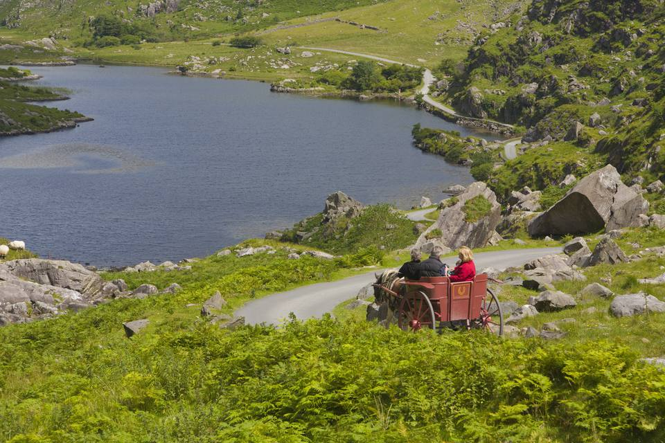Tourists in Jaunting Car, in Ireland