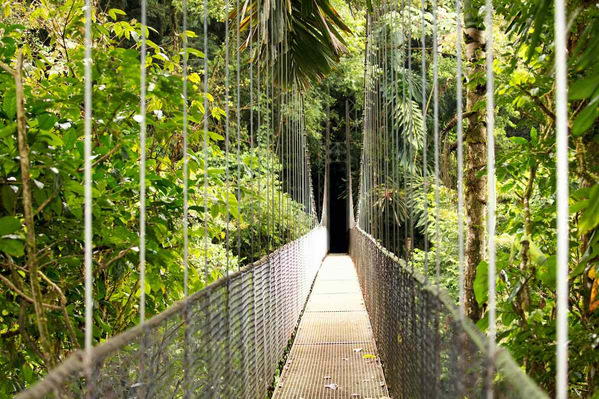 Hanging Bridges Trail suspension bridge, Arenal National Park