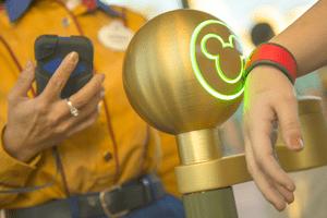 Using My Disney Experience at Disney World