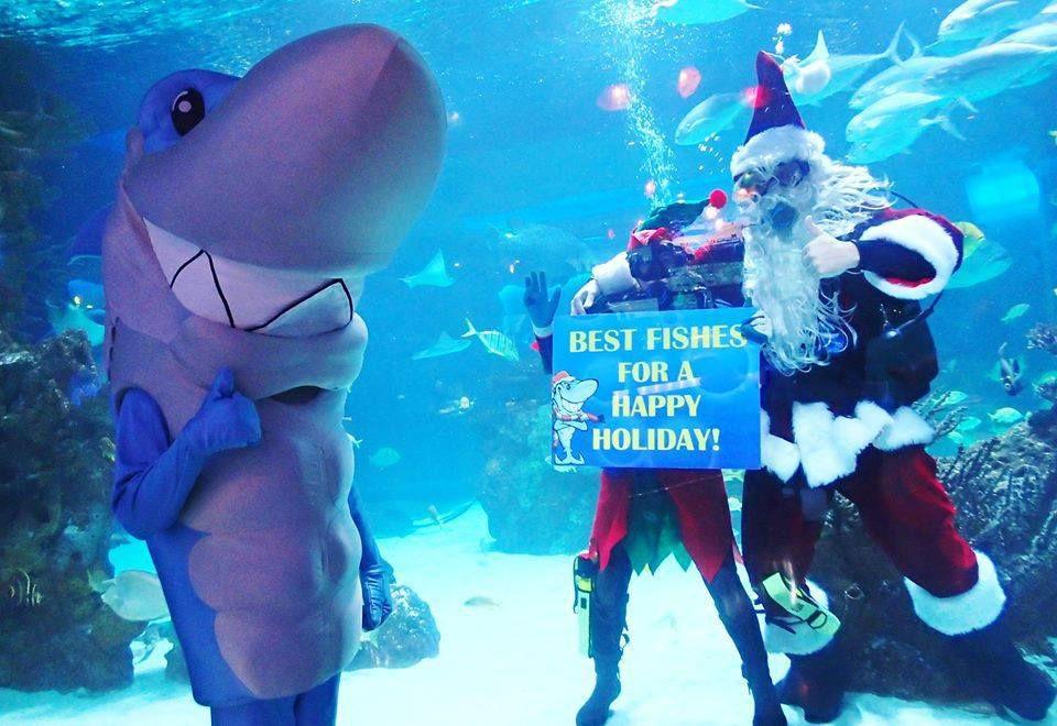 Santa diving at the Aquarium Restaurant, Houston