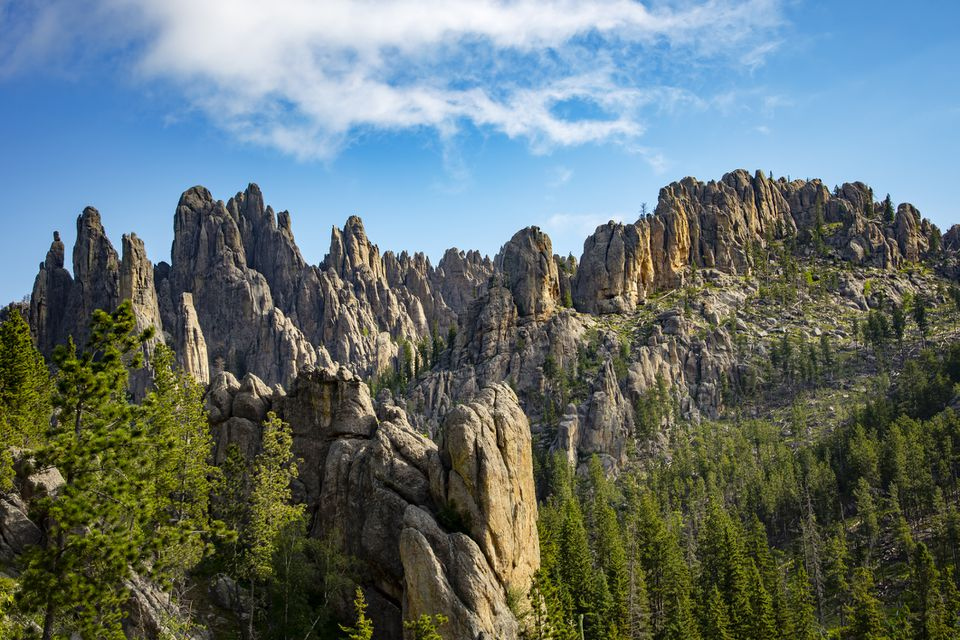 The Needles, a beautiful formation of granite spires in the Black Hills of South Dakota. They tower over the surrounding landscape, and in this image, are catching the morning sun.