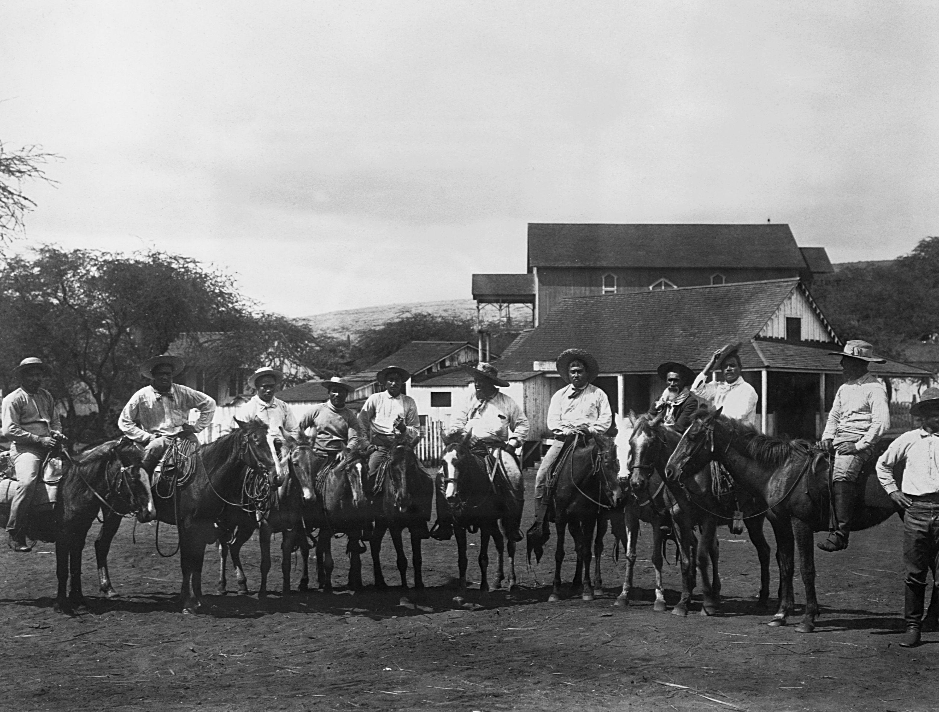 Hawaiian cowboys on horseback, Waimea, 1899.