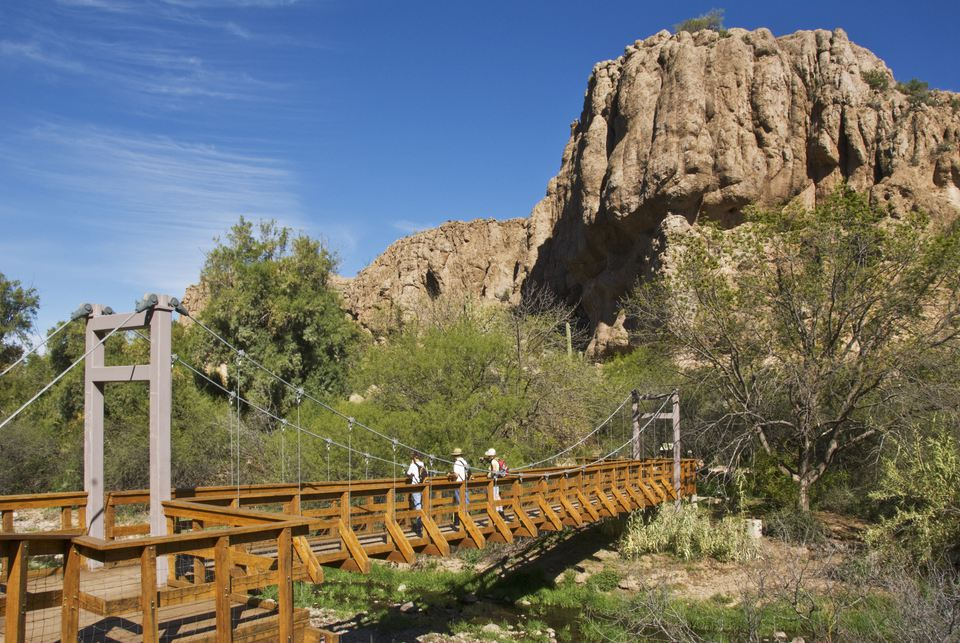 Suspension bridge over Queen Creek, Boyce Thompson Arboretum.