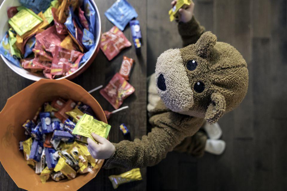 Cute Baby Boy inside Bear Costume Eating or Grabbing Candies