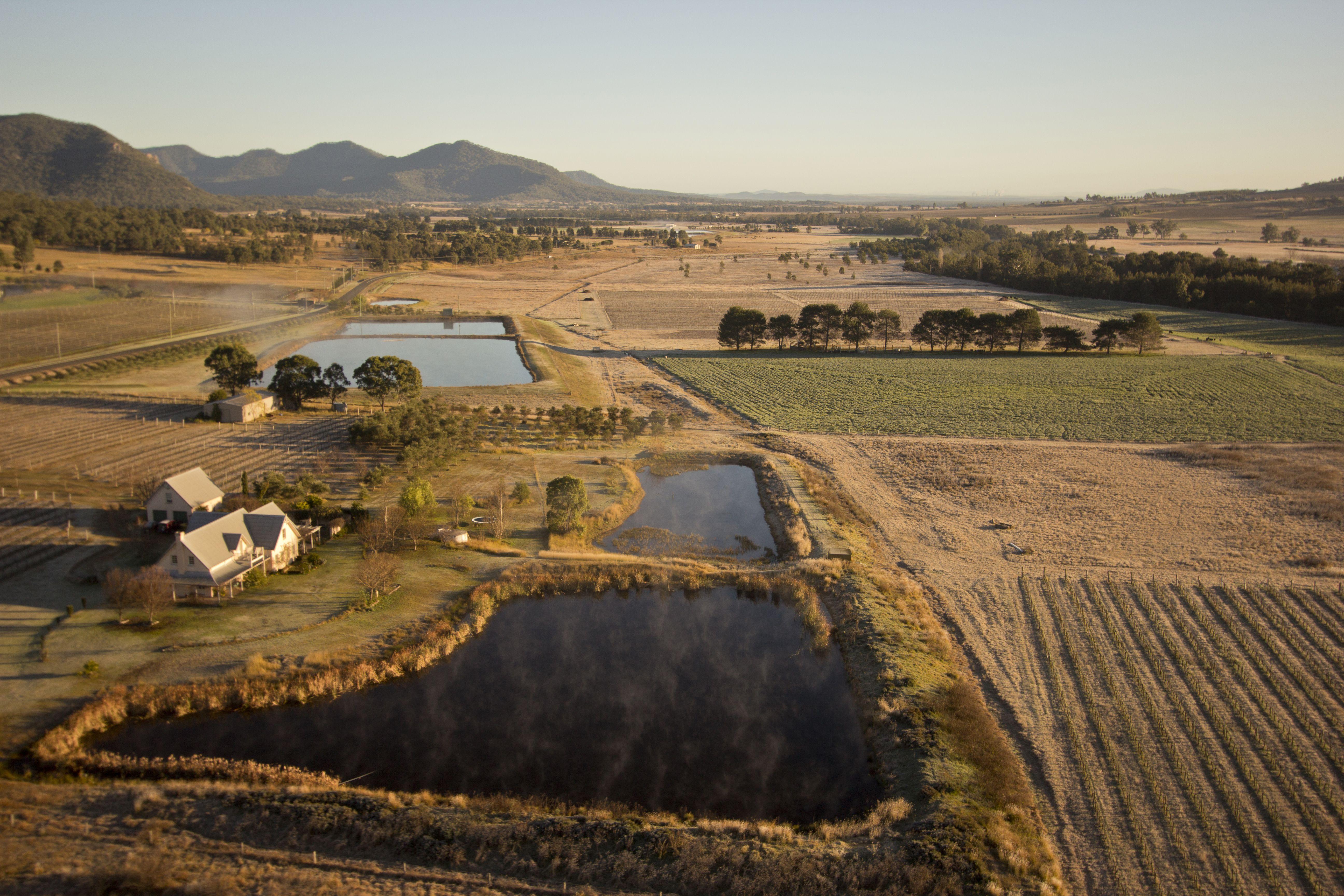 Aerial view of Hunter Valley vineyards