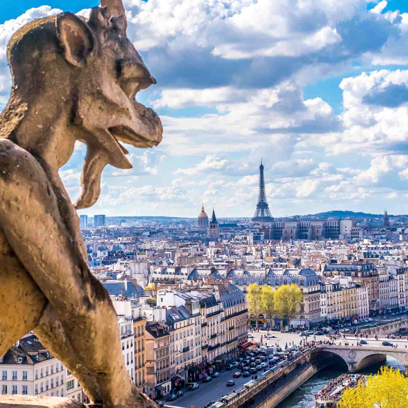 View of Paris from Notre Dame gargoyle