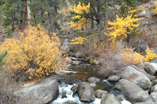 West Fork Carson River, near Hope Valley