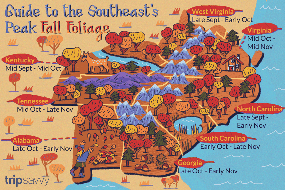 Guide to the Southeast's Peak Fall Foliage