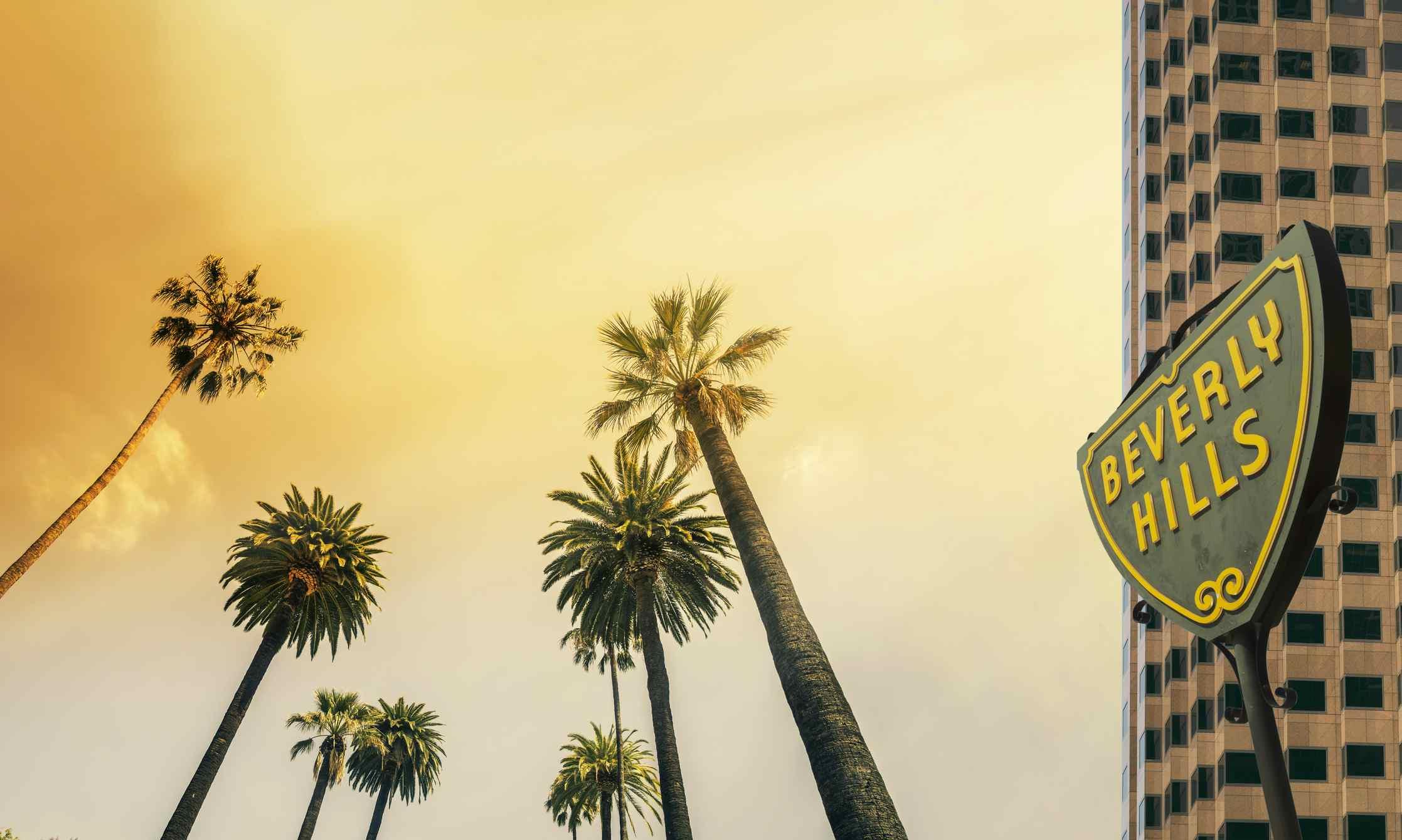 Beverly Hills,West Coast Palm Tree Sunshine