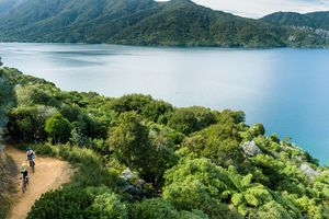 calm blue sea surrounded by forested hills and green trees with two people on mountain bikes
