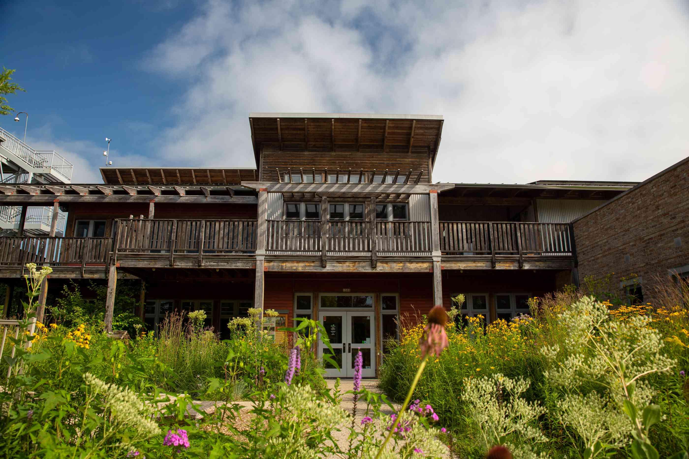 Exterior del Centro de Ecología Urbana con flores silvestres creciendo en frente
