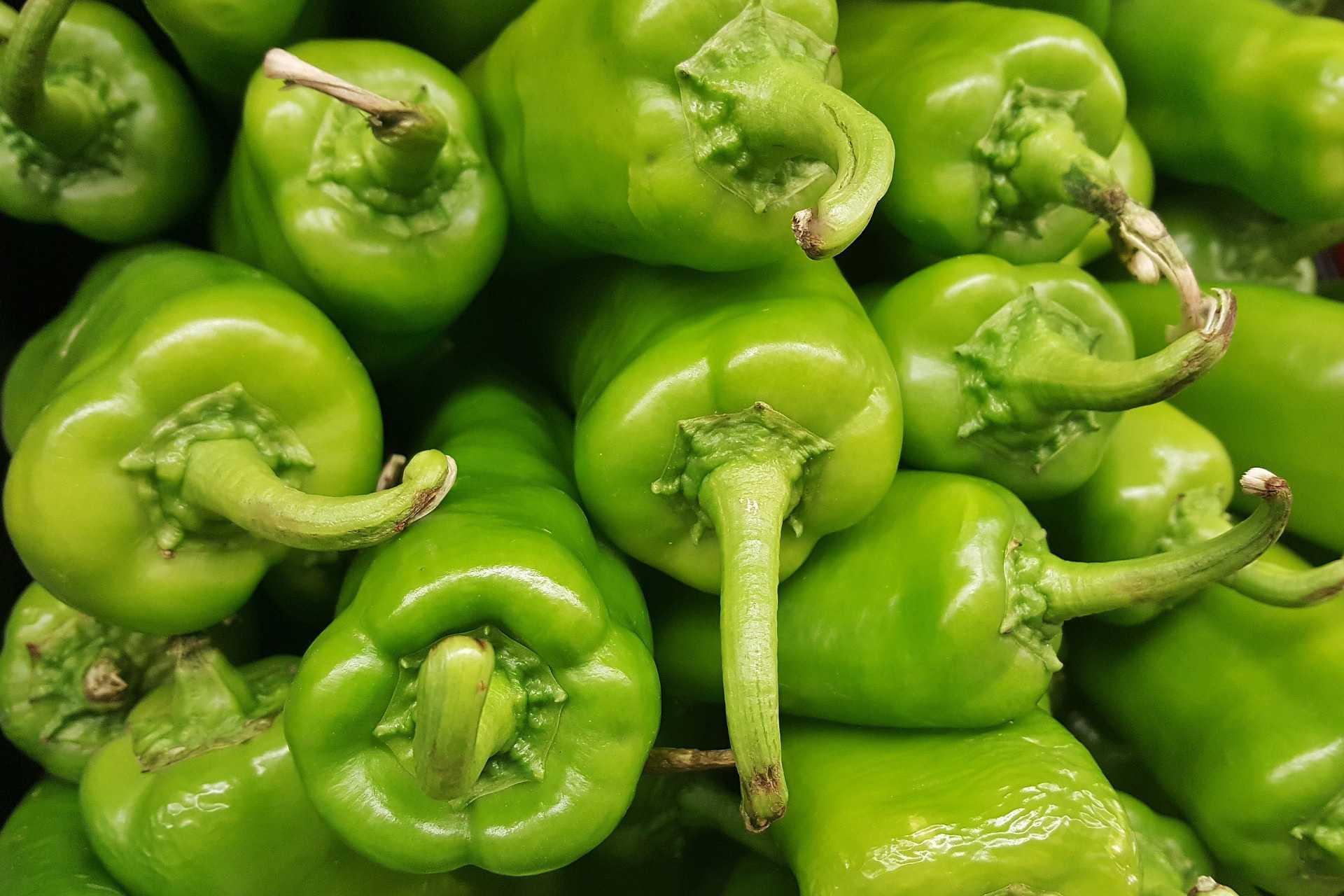 Anaheim pepper