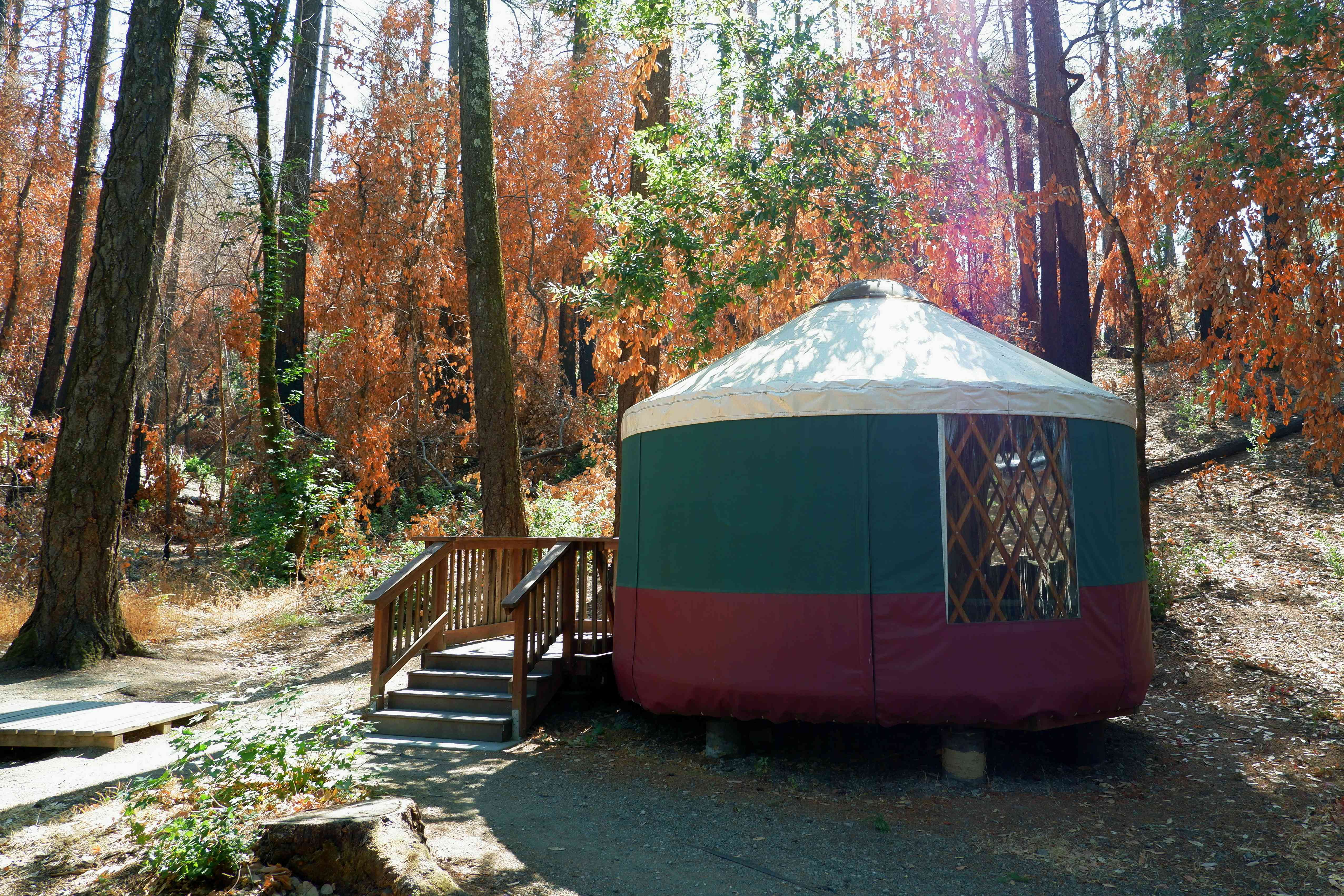 Camping yurt in Bothe State Park, Napa Valley, California.
