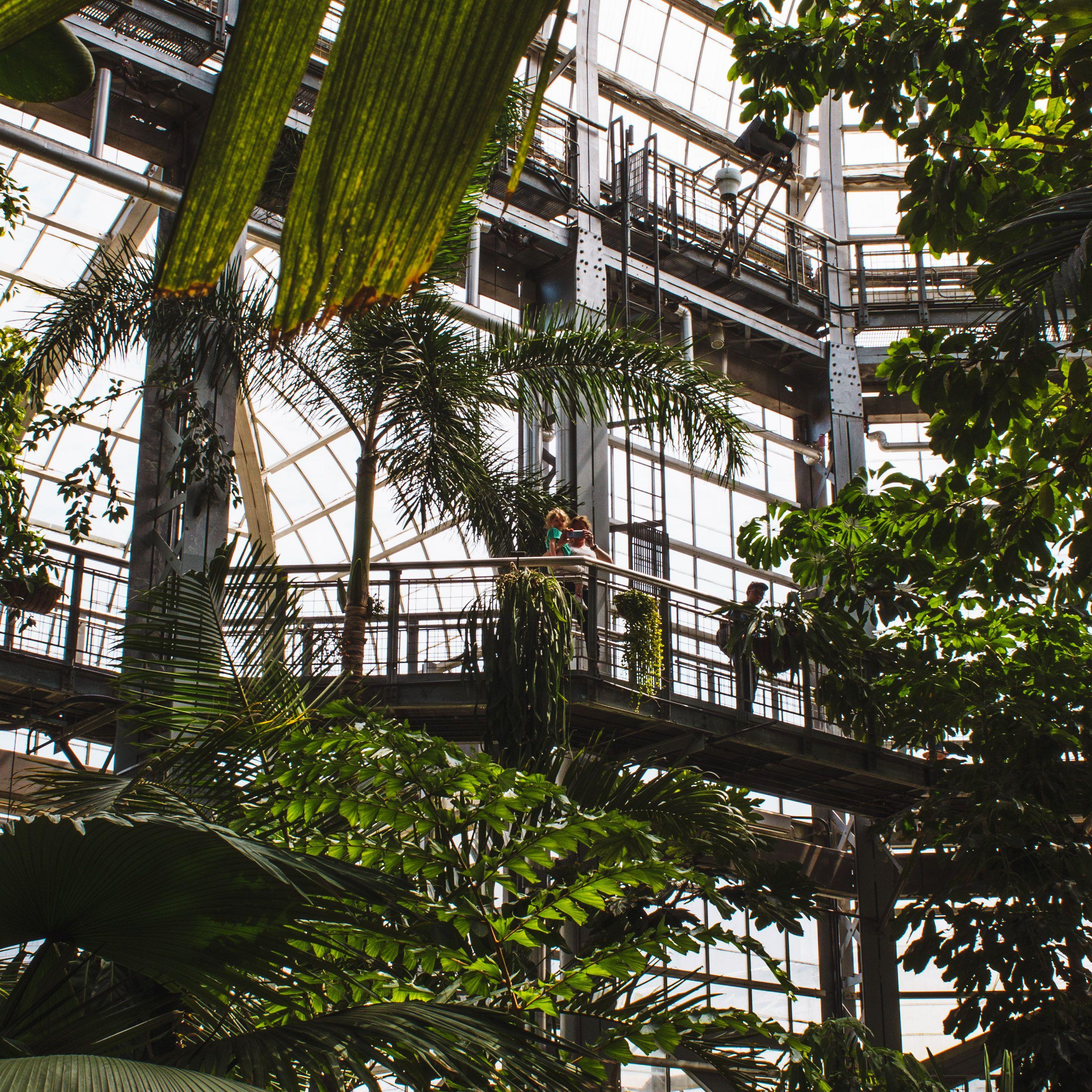 The National Botanical Garden